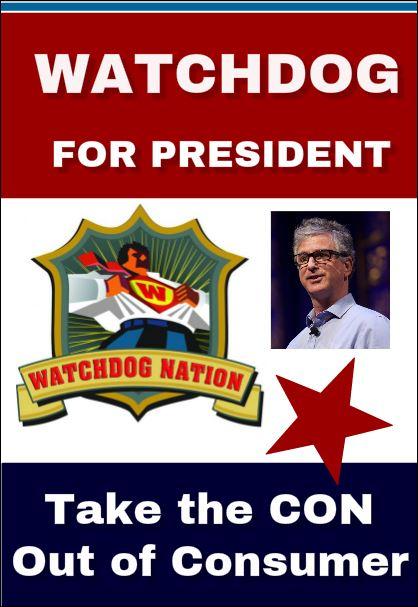 Why I'm (Pretend) Running for President